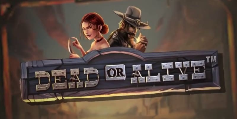 Dead or Alive 2 Slot – sequel to the infamous slot Ever