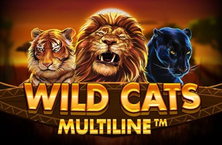 Wild Cats Multiline by Red Tiger