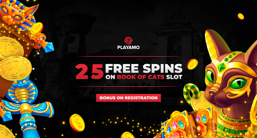 PlayAmo Casino No Deposit Bonus 2021